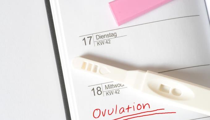 必要に応じて簡単な受胎または避妊のための排卵日数を計算する方法