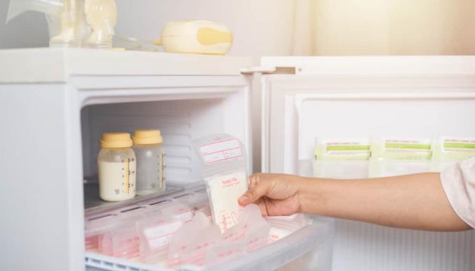 모유의 올바른 보존에 관한 10 가지 질문