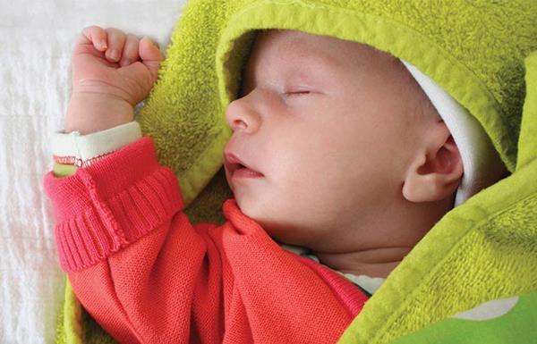 Come allevare un neonato standard nei primi 3 mesi