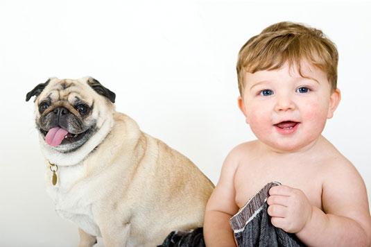 개와 아기가 등장하는 사진을 찍는 방법